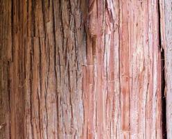 close-up van boomschors