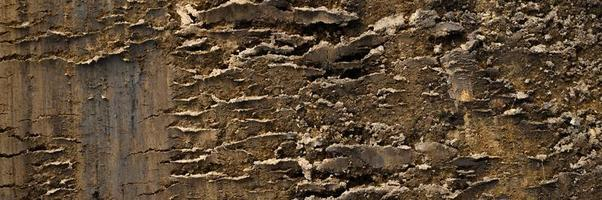 achtergrondstructuur van het losse oppervlak van het zand en de aarde foto