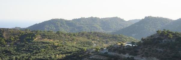 landschap van een bergachtig gebied met olijfboomplantages foto