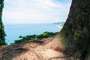 uitzicht op de oceaan vanaf het land foto
