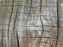 close-up van houten paneel voor achtergrond of textuur foto