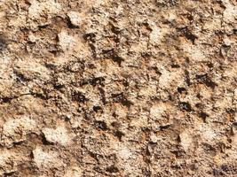 close-up van steen of rotswand voor achtergrond of textuur foto