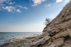 rotsachtig zeegezicht met boom en stenen foto