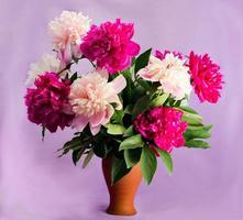 roze en witte pioenrozen in een vaas foto