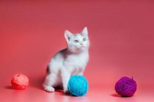 grijze en witte gestreepte kat met bollen van garen