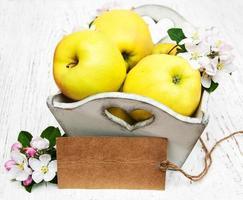 appels en appelboombloesems foto