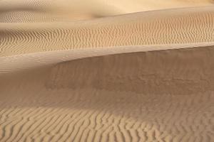 prachtige zandduin in de woestijn van thar, jaisalmer, rajasthan, india. foto