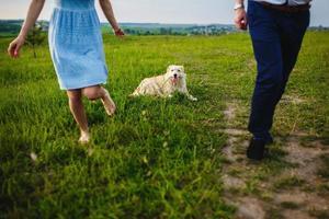 happy dog rust uit bij de eigenaren in de natuur. plezier hebben met hun hond in het park foto