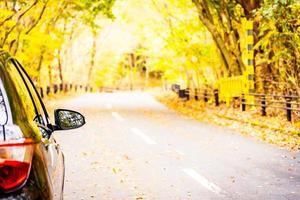 auto op de weg in herfst bos foto