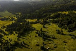 luchtfoto in het Tara-bergbos in Servië foto