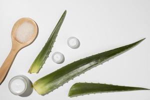 aloë vera bladeren met witte huidcrème, schoonheidsconcept foto