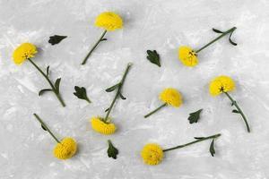 plat lag gele bloemen op neutrale achtergrond foto