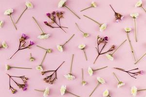 plat bloemen op roze achtergrond foto