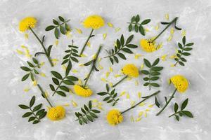 gele bloem plat gelegd foto