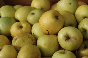 groen appelfruit, gezond en smakelijk eten foto