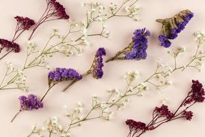bovenaanzicht bloemen plat leggen foto