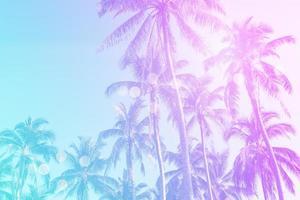 tropische palmkokospalmen op de gloed van de zonsonderganghemel en bokeh aardachtergrond. foto