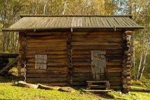 hut in een bos van berkenbomen in Taltsy, Rusland foto