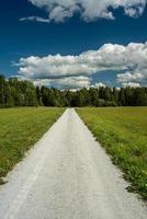 onverharde weg die naar een bos leidt foto