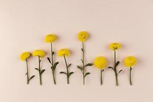 gele bloemen plat leggen foto