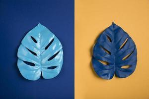 blauwe bladeren op blauw oranje achtergrond foto