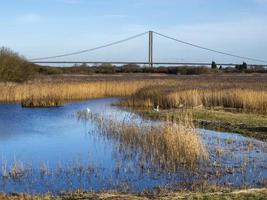 Far ings Nature Reserve, Lincolnshire, Engeland, met de Humber Bridge op de achtergrond foto
