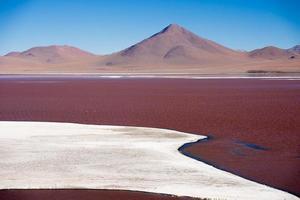 laguna colorada op het plateau altiplano in bolivia foto