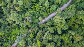luchtfoto bovenaanzicht auto rijden door het bos op landweg, uitzicht vanaf drone foto