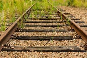 oude overwoekerde spoorlijn met houten balken foto
