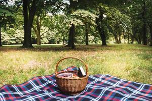 rieten picknickmand op een deken in een park foto
