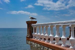 zee landschap met een zeemeeuw op het balkon. foto