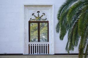 palmbladeren tegen de witte muren van het huis foto