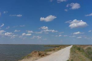 landweg die langs het meer met riet leidt. foto