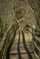 oude scheve brug op een wandelpad in zweden foto
