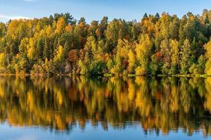 herfst gekleurde bomen langs een rivier die in zonlicht gloeit foto