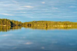 zomer uitzicht op een bos steek een meer in Zweden foto