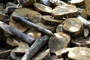 natuurlijke achtergrond met gesneden schijven van bomen foto