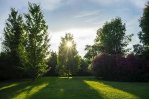 natuurlijke achtergrond met groen gazon foto