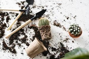 bovenaanzicht van cactus met tuingereedschap foto