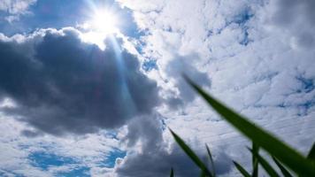 blauwe lucht en witte wolken onderaanzicht met groen gras lentetijd foto