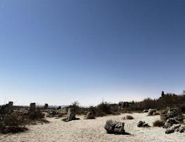 uitzicht op het strand met wolkenloze hemel foto