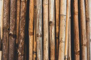hout achtergrondstructuur foto
