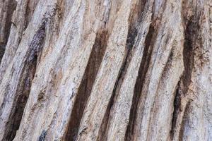 langzaam verdwenen oude houten achtergrond. foto