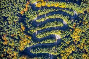 luchtfoto van een kronkelende bergweg die door een dennenbos herfstkleuren passeert foto