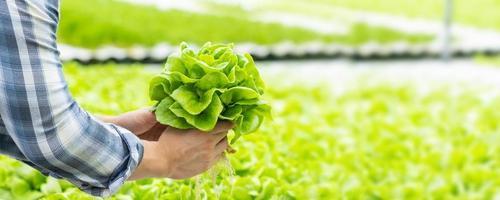 boer die hydrocultuur groente in natuurlijke organische plantengroei van de boerderij houdt foto