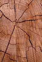 houten achtergrondstructuur foto
