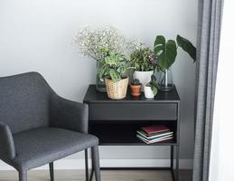 verschillende kamerplanten op tafel foto