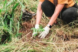 close-up van de hand van een vrouw met witte doek handschoenen aanplant van bomen in het bos concept voor behoud van het milieu foto