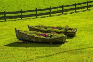 twee oude houten boten die als plantenbakken werden gebruikt in het midden van een groen gazon foto