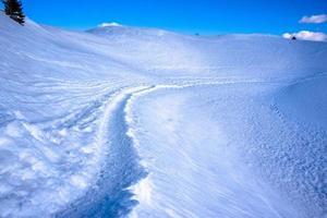 voetafdrukken in de sneeuw foto
